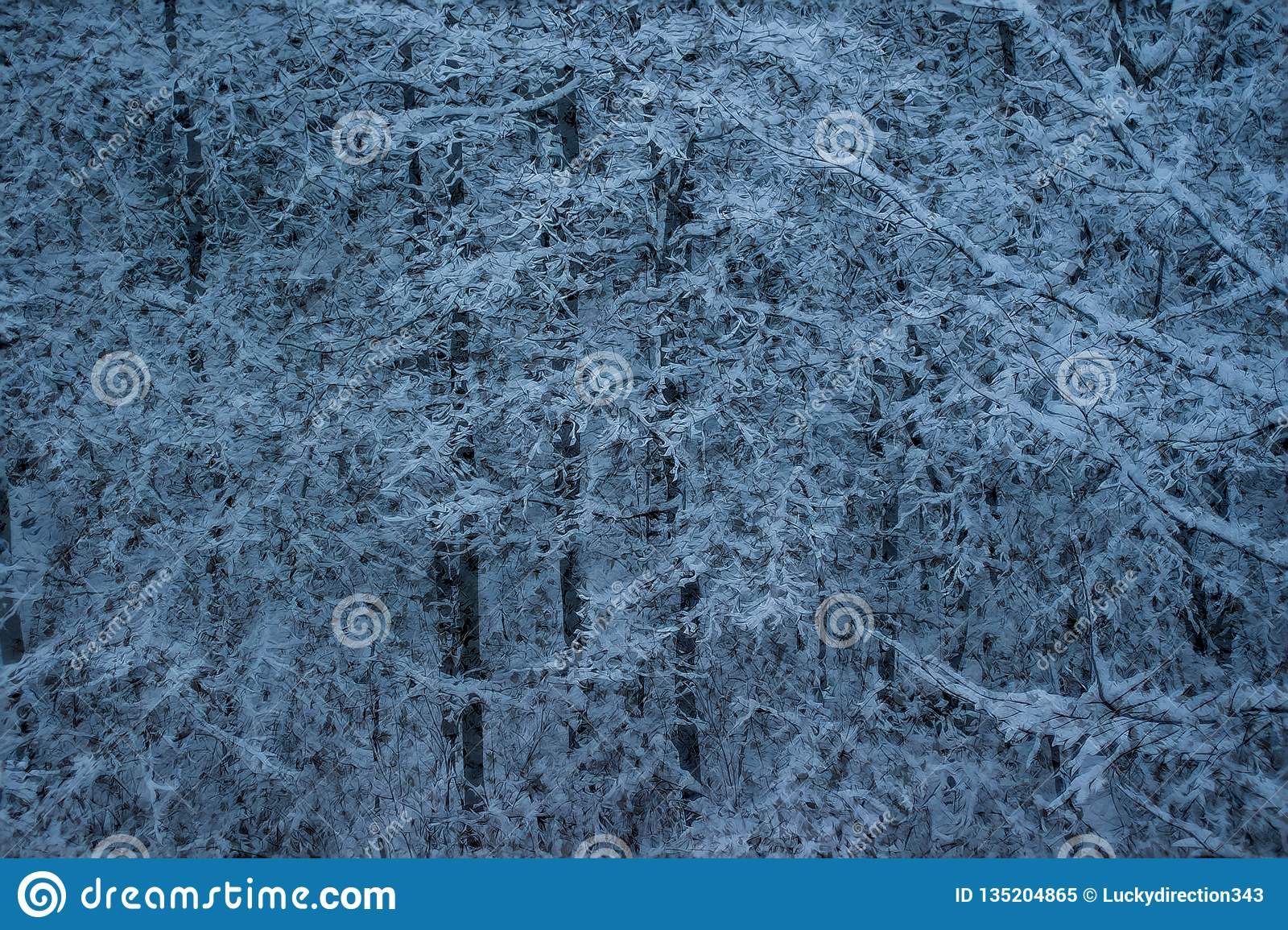 Snow on trees closeup background wallpaper