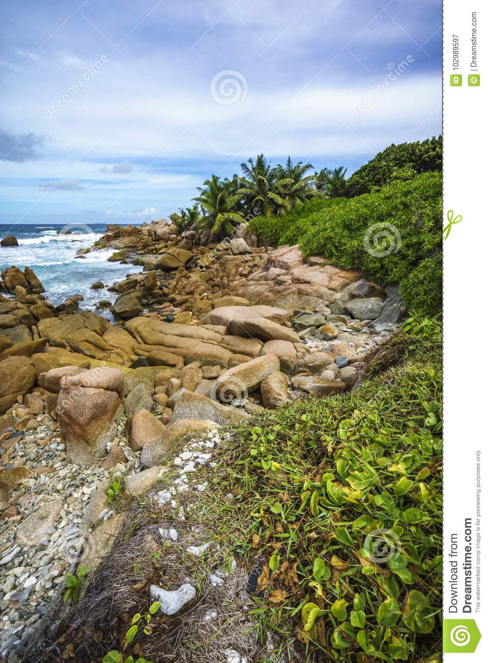 Hiking The Rough And Wild Rocky Coastline At Anse Songe La Digue Seychelles Lush Green Grass Palm Trees Granite Rocks And The Indian Ocean