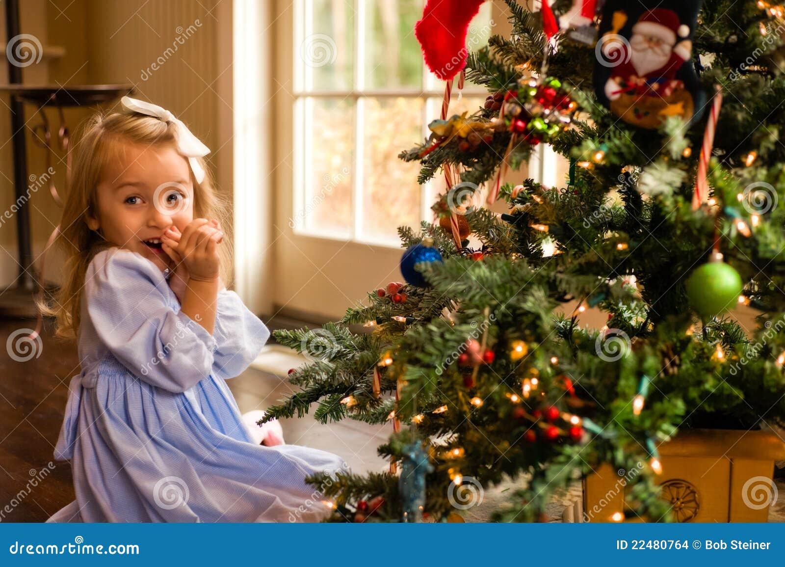 Rougissement au-dessus de l arbre de Noël