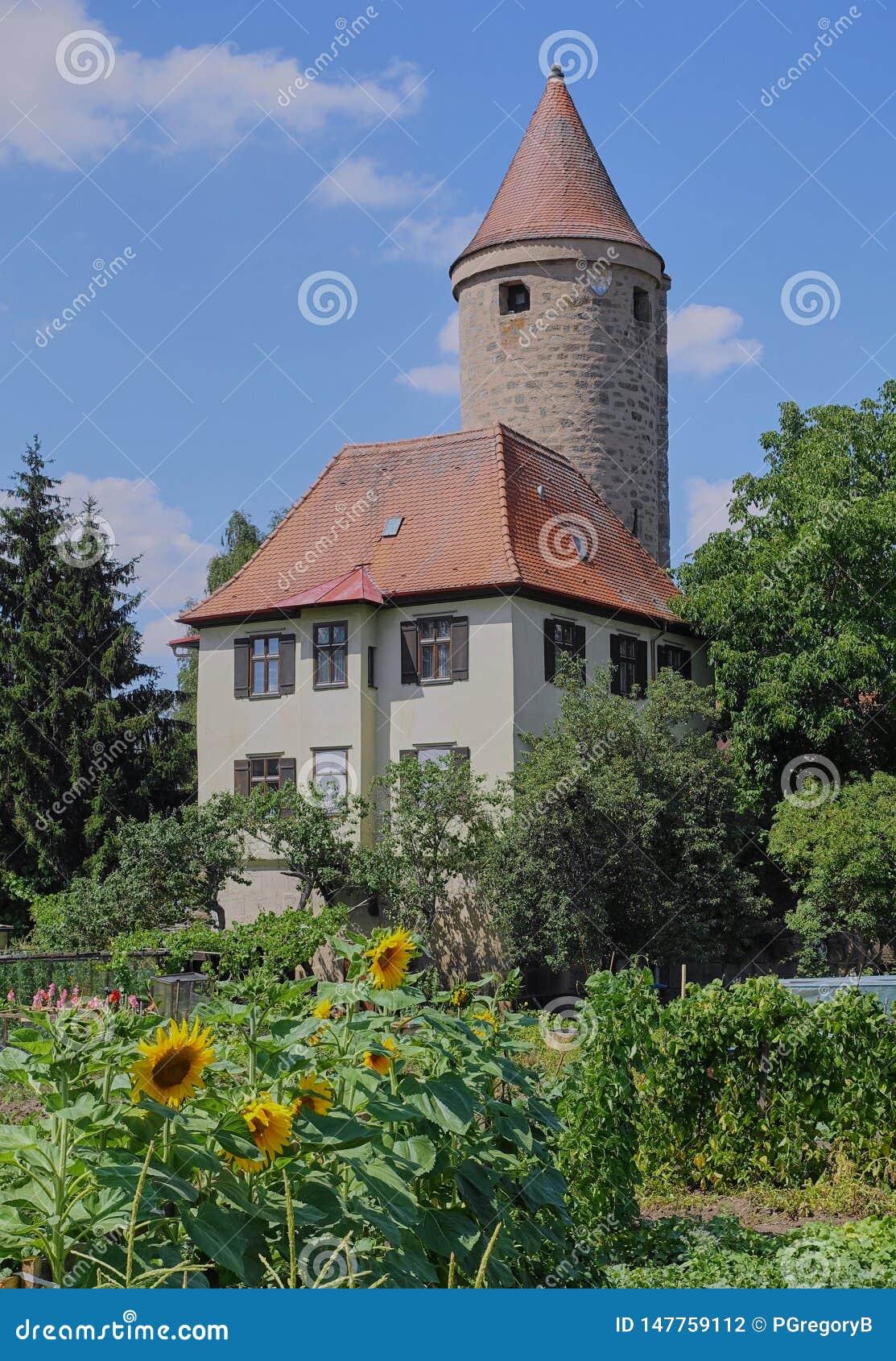 Round Średniowieczny wierza z słonecznika ogródem