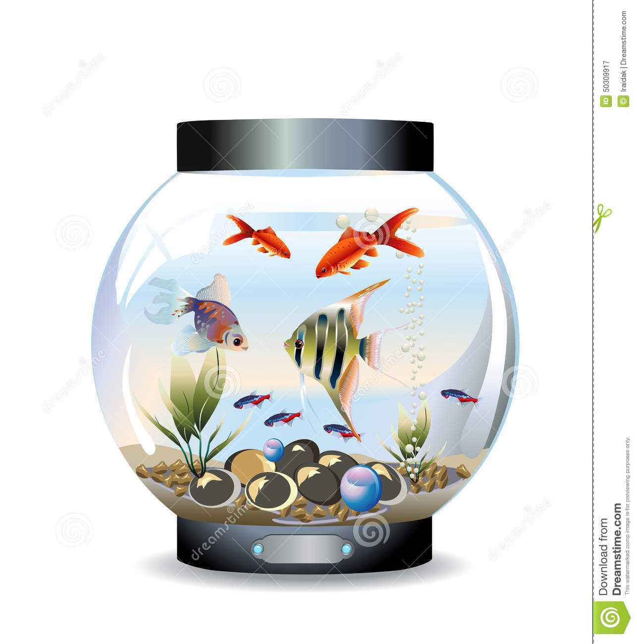 Round aquarium stock vector image of tank gold green for Filtre aquarium rond