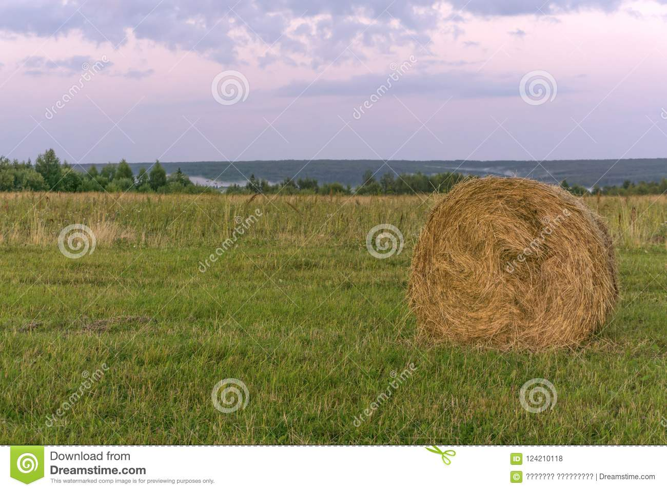 Round bale of hay on a beveled meadow