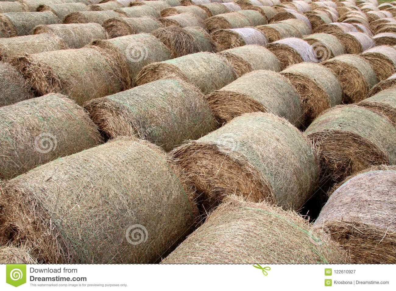 Round bales background