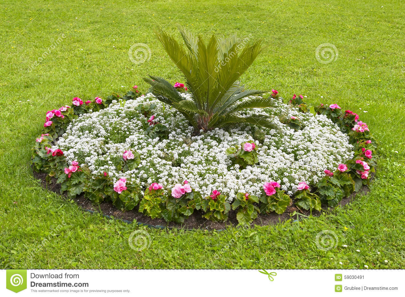 Round flower bed stock photo image 59030491 for Round flower garden designs