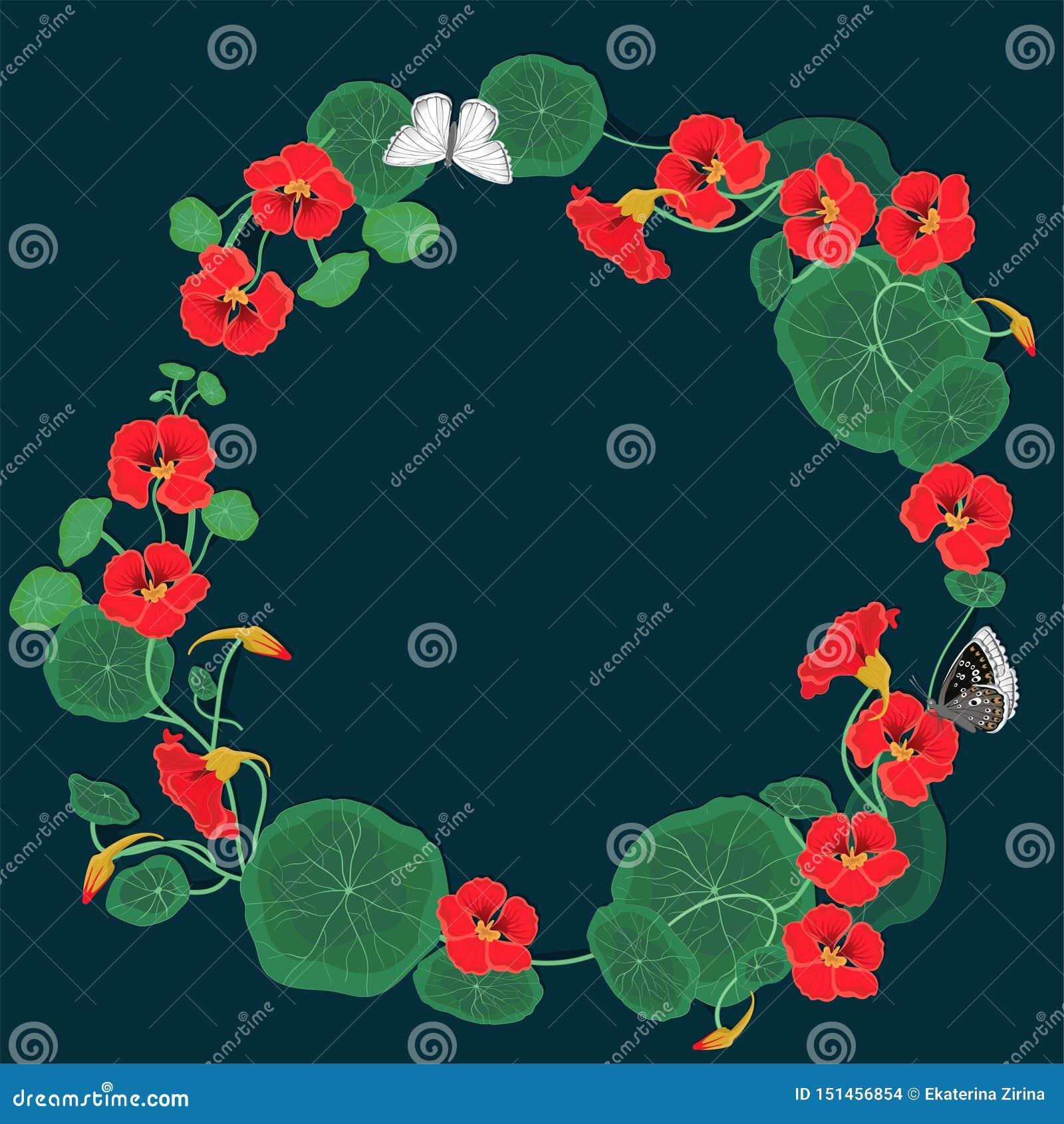Round frame of nasturtium flowers with butterflies. Vector template