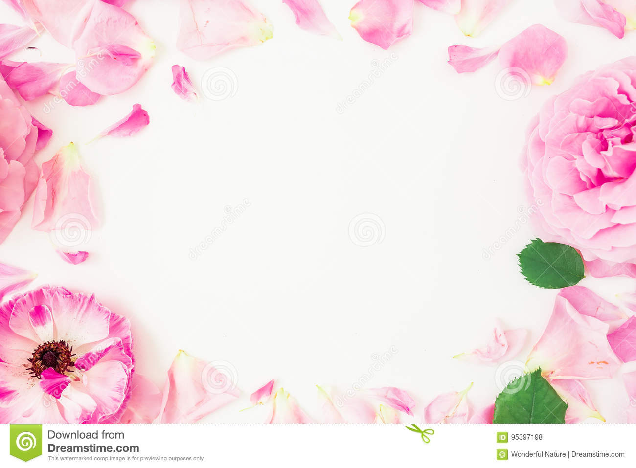 Round frame of pink flowers, petals and leaves on white background. Floral lifestyle composition. Flat lay, top view.