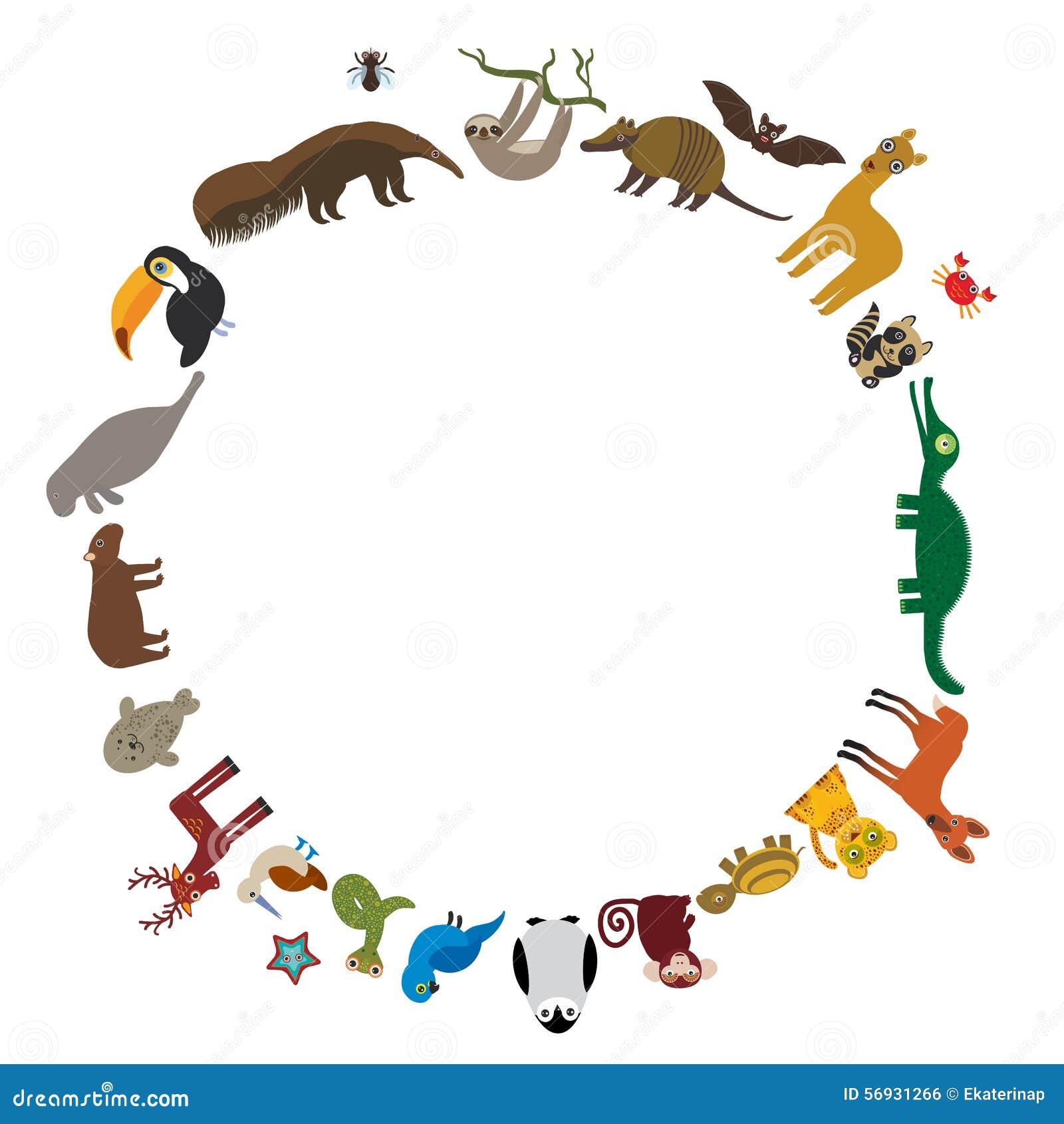 Round frame. Sloth anteater toucan lama bat seal armadillo boa manatee ...