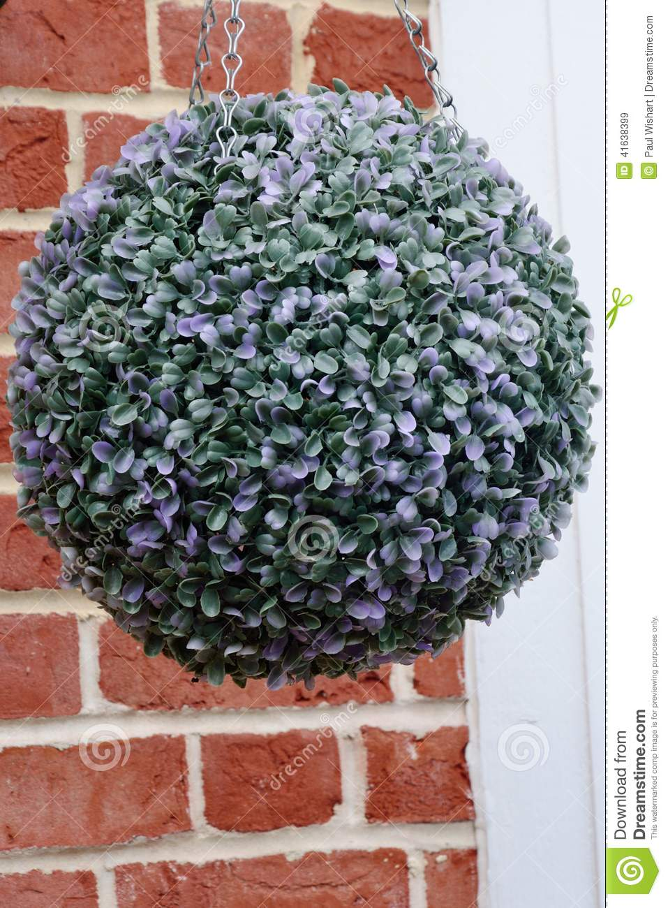 How To Make Round Hanging Flower Baskets : Round hanging basket plant stock image of