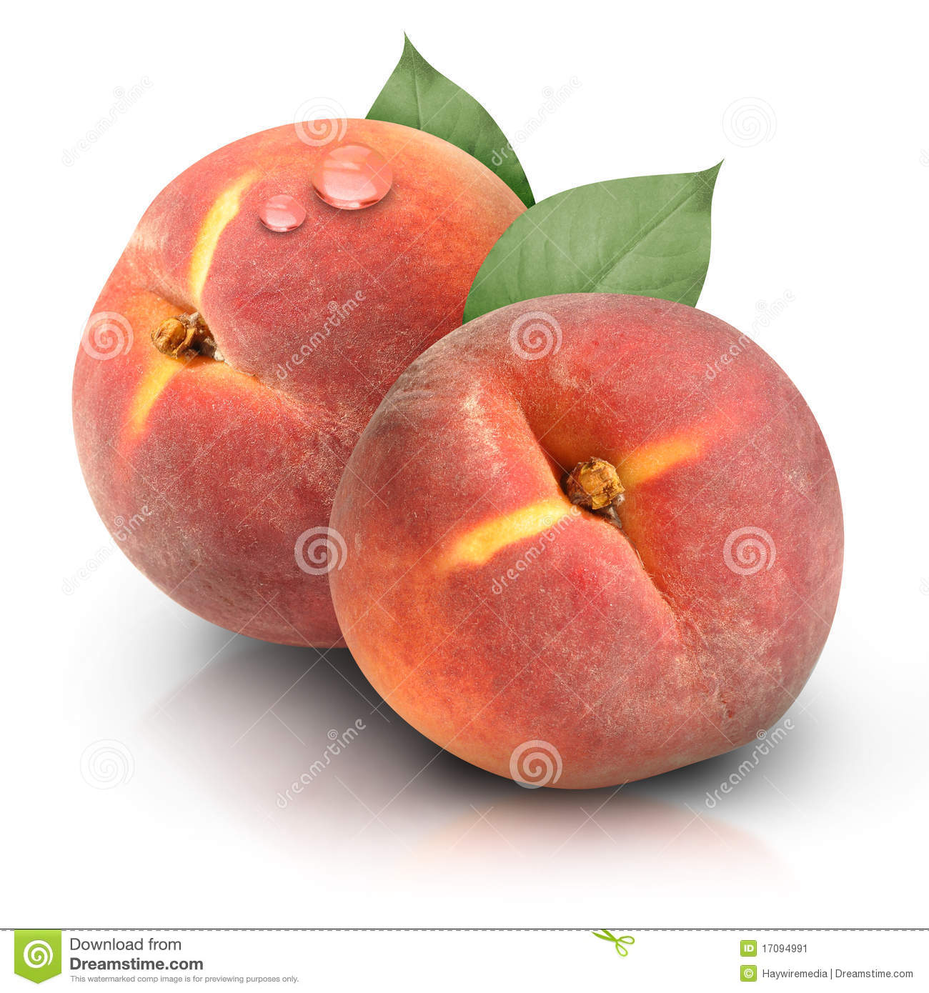 Round Peaches on White Background
