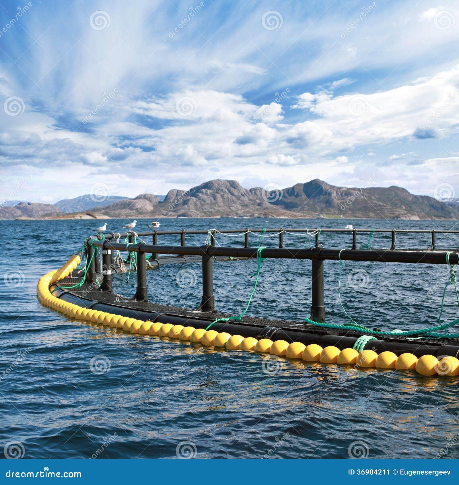 Round rybiego gospodarstwa rolnego klatka