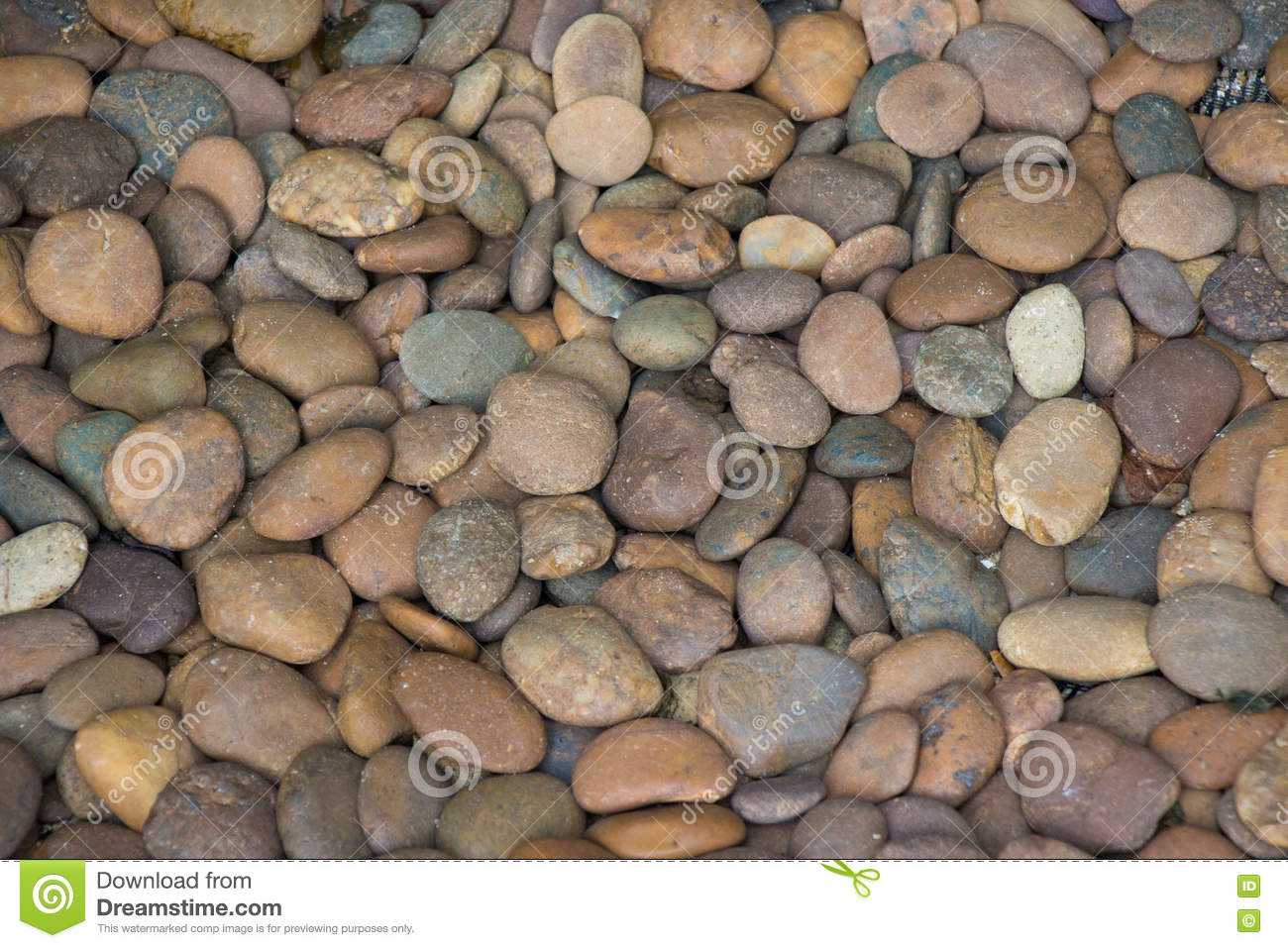 Rounded Stones Eroded From A River And Piled In An