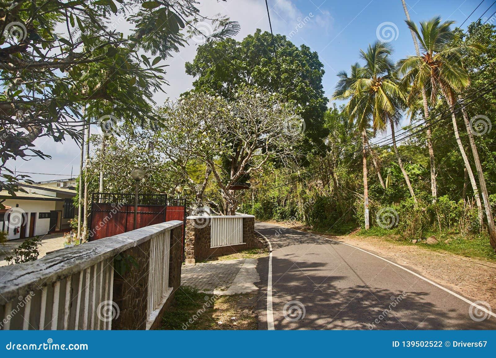 Route à la plage de jungle Unawatuna Hôtel sur la route