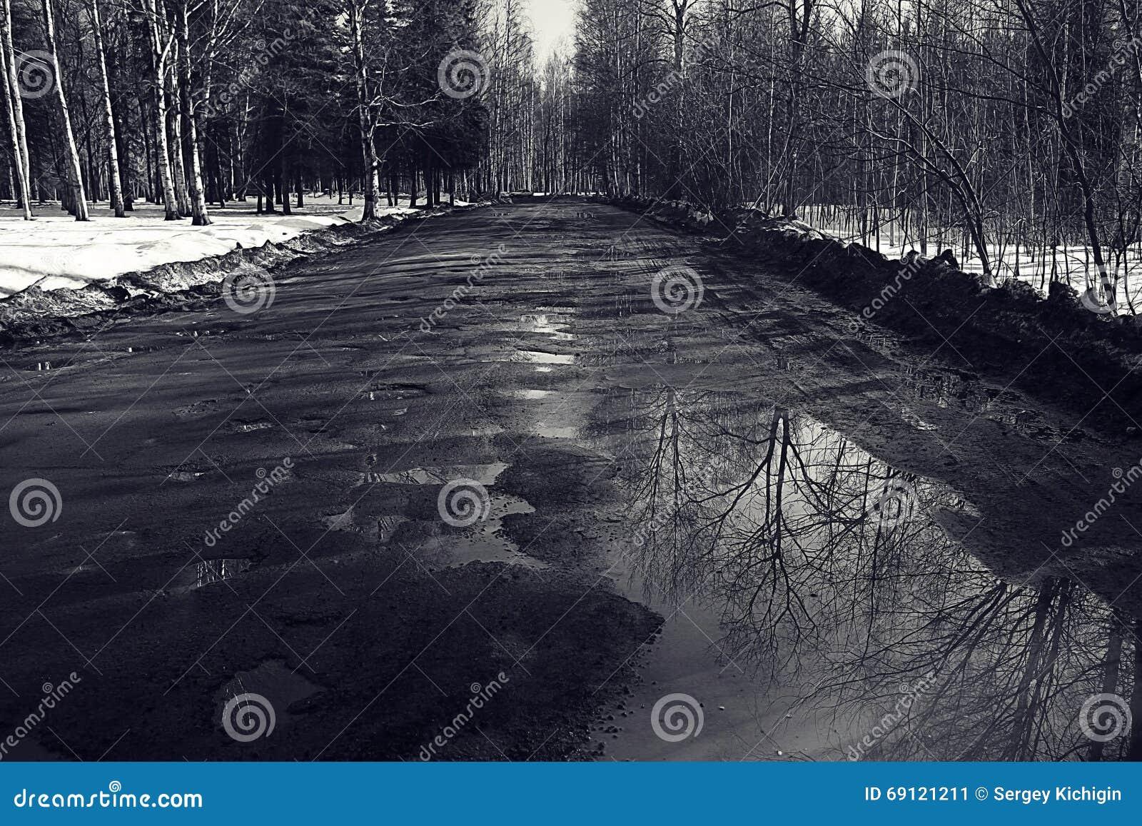 Route cassée par ressort