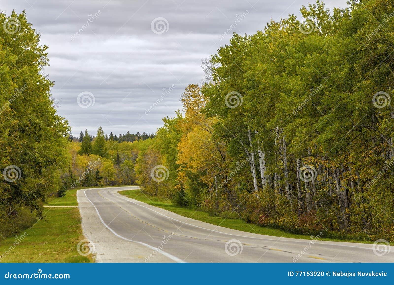 Route d automne