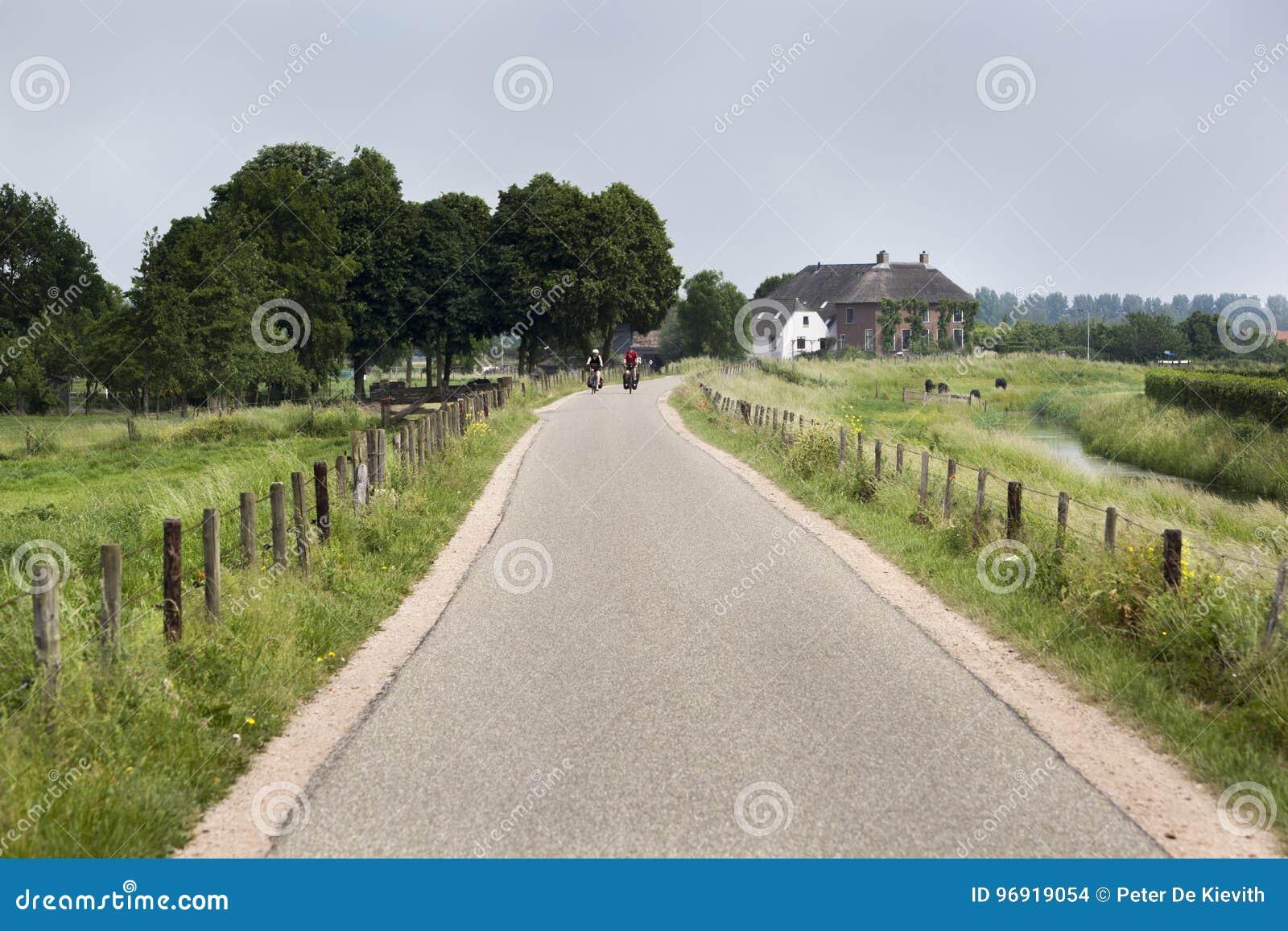 Route de campagne avec des cyclistes dans la distance