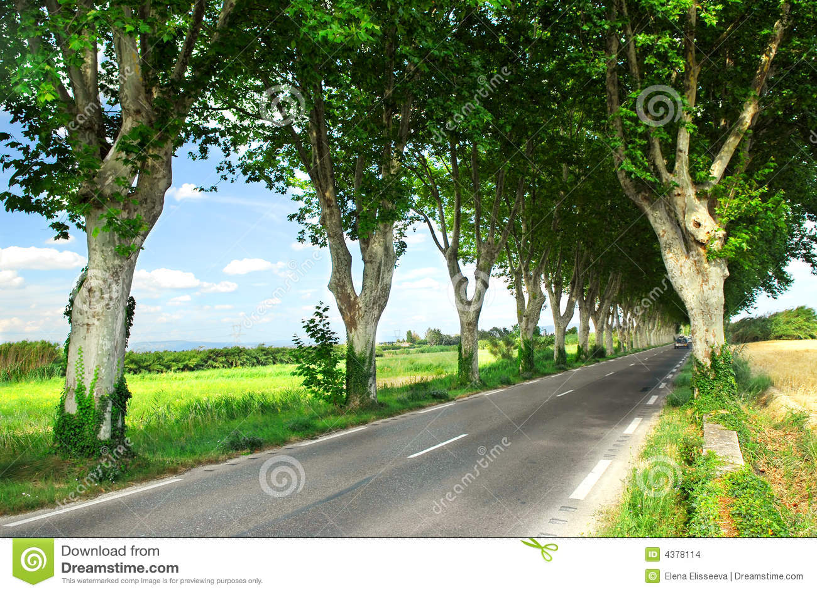 Route de campagne française
