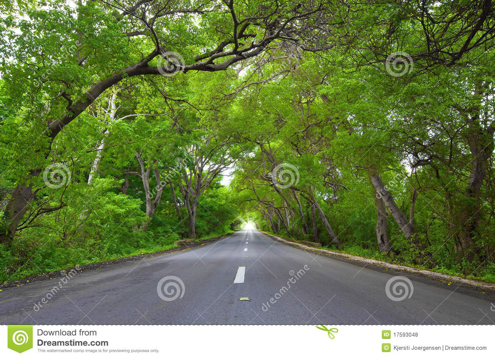 Route sur le Curaçao