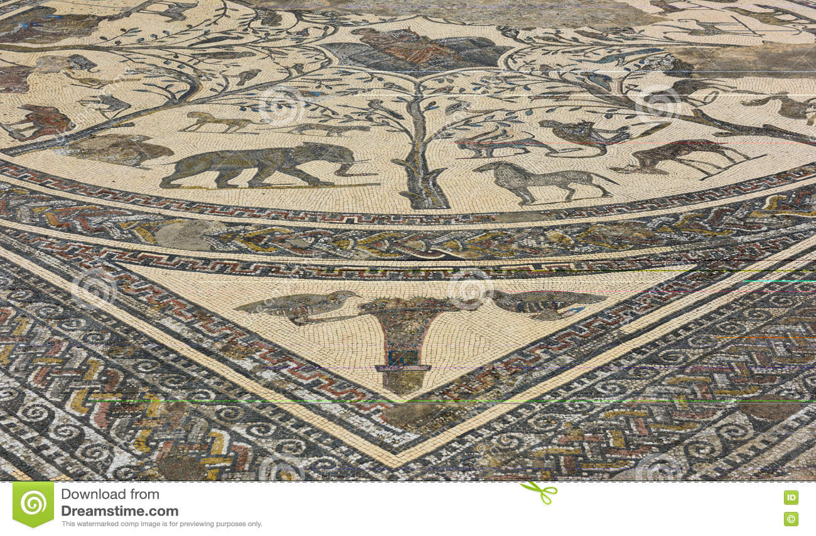 Rovine romane a volubilus marocco immagine stock immagine di