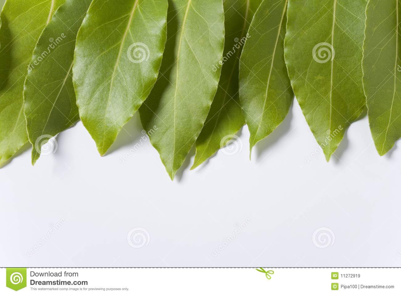 how to cook with bay leaves