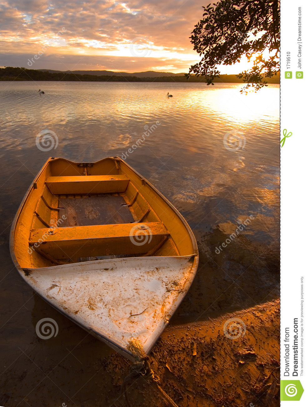 Row-boat and pelicans stock photo. Image of history, beach - 1719510
