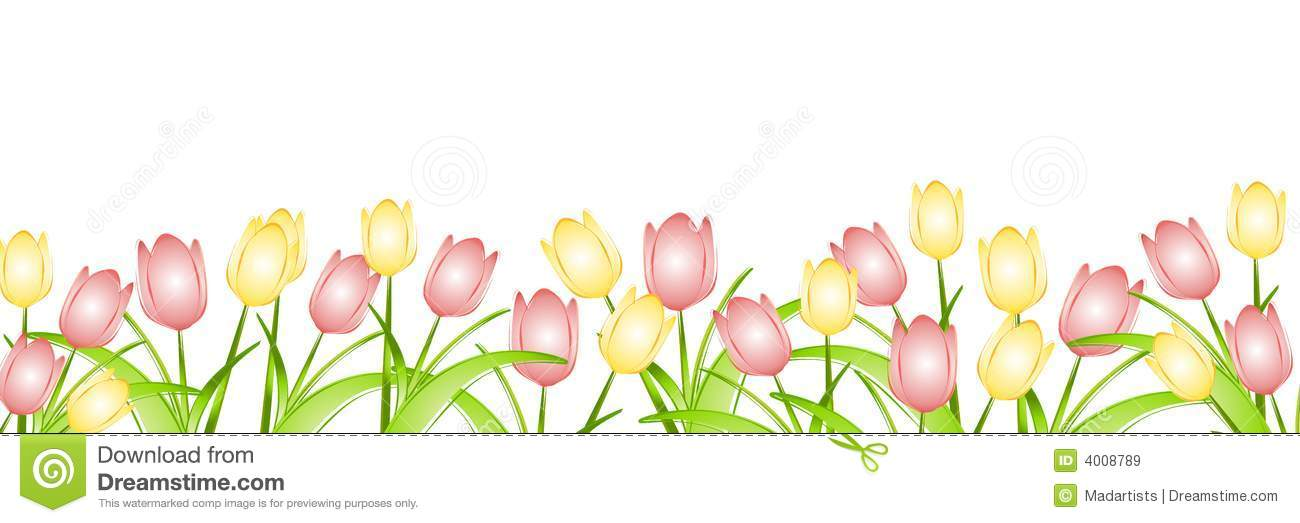 Row Of Spring Tulips Royalty Free Stock Images - Image ...Tulips Page Borders Clipart Free
