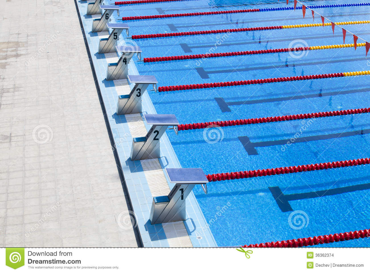 The Row Of Starting Blocks Of A Swimming Pool Stock Photo ...