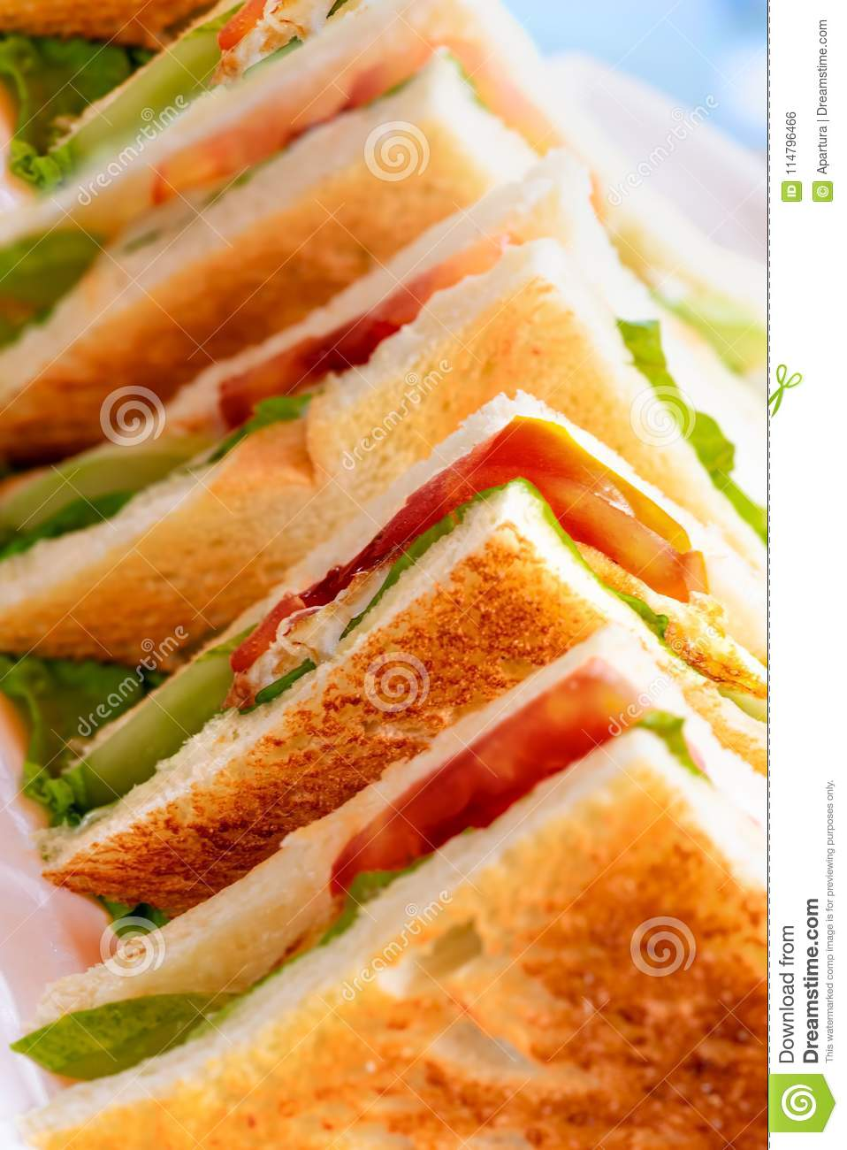 Row of toasted club sandwich with tomato, lettuce, egg and mayonaise