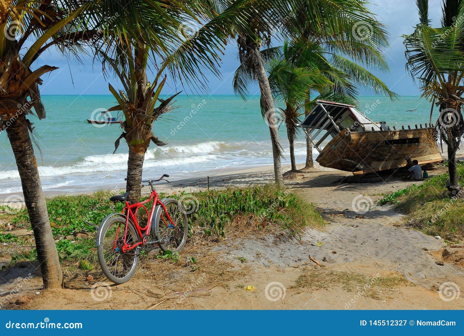 Rower i ??d? w tropikalnej pla?y