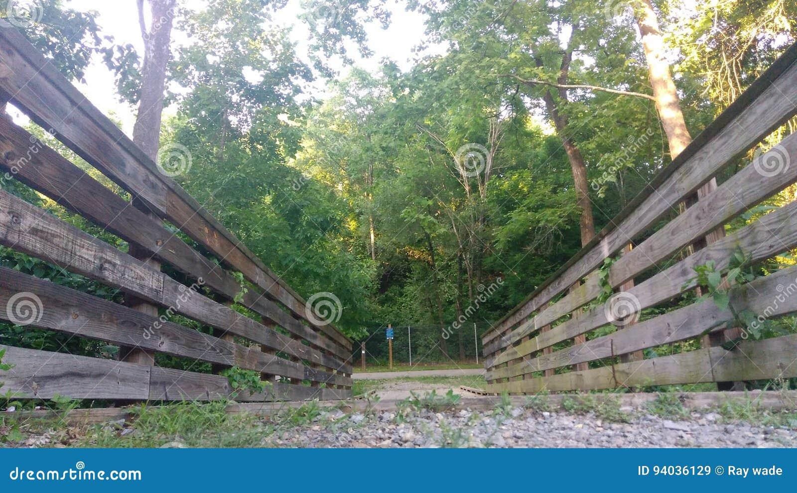 Roweru śladu most