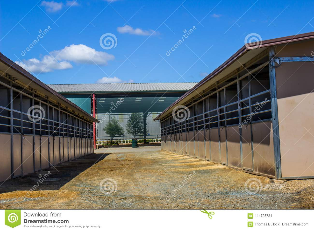 Horse Stalls Outside Equestrian Arena Stock Image Image Of Equistrian Doors 114725731