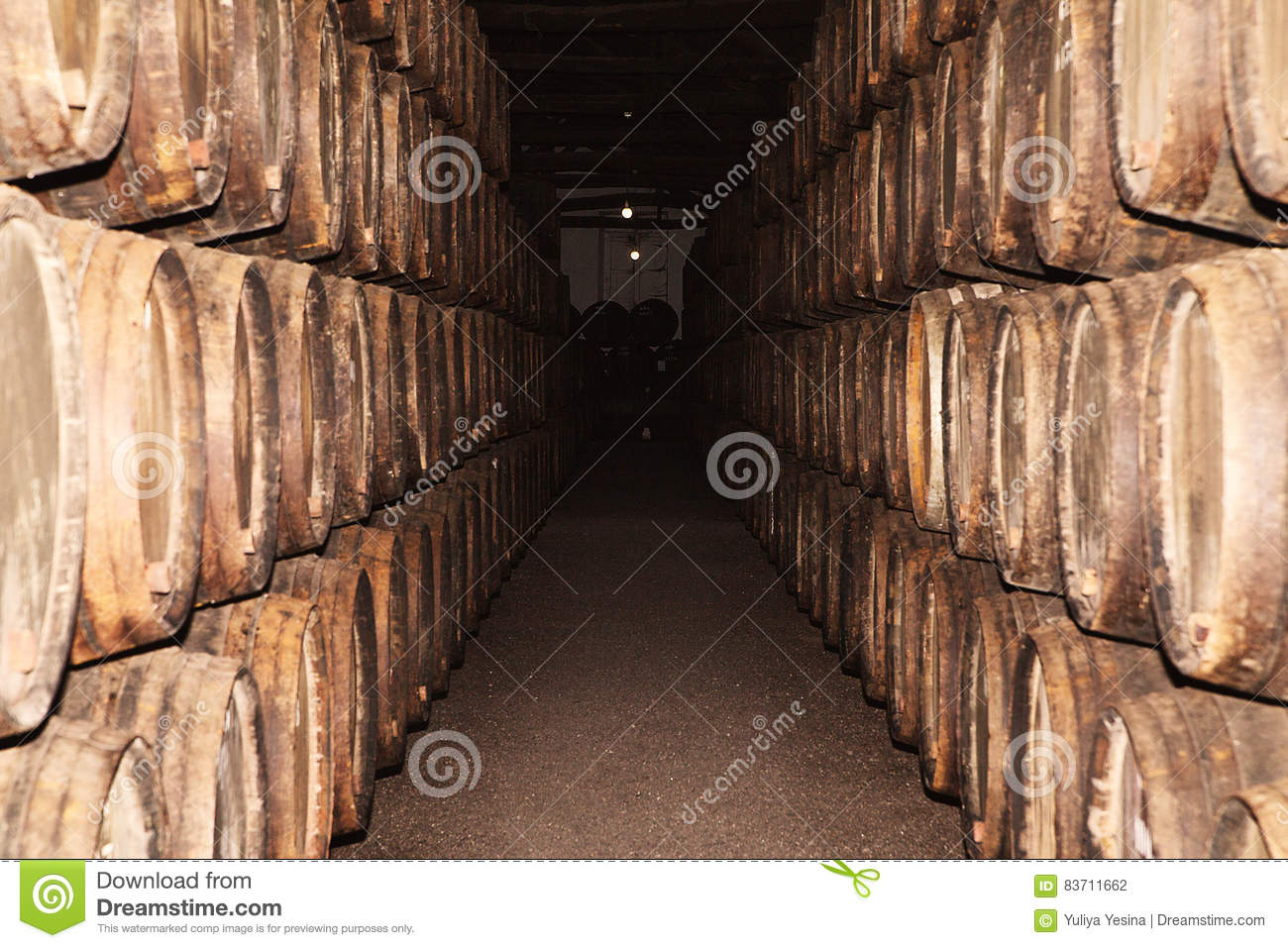 Rows Of Large Oak Barrels In A Dark Cellar. Plant For The Produc Stock Photo