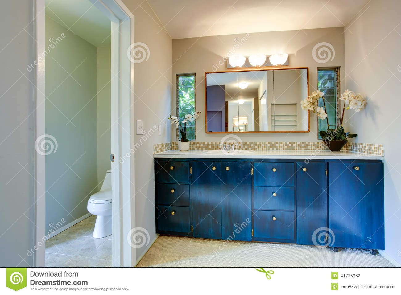 Royal Bathroom Vanity Cabinet With Flowers Stock Photo