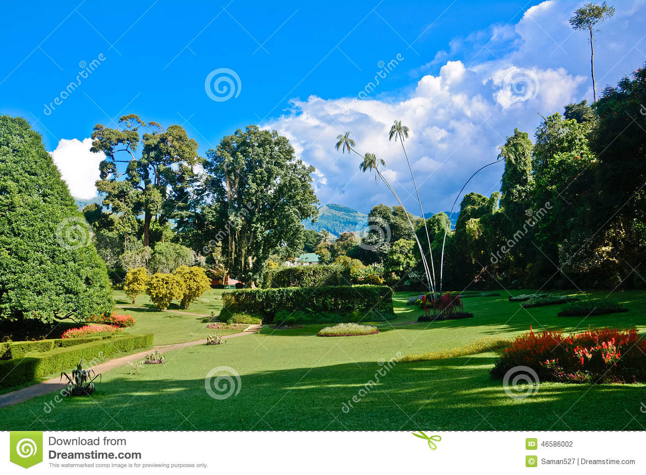 Royal botanical garden peradeniya sri lanka stock photo for Sri lankan landscaping plants