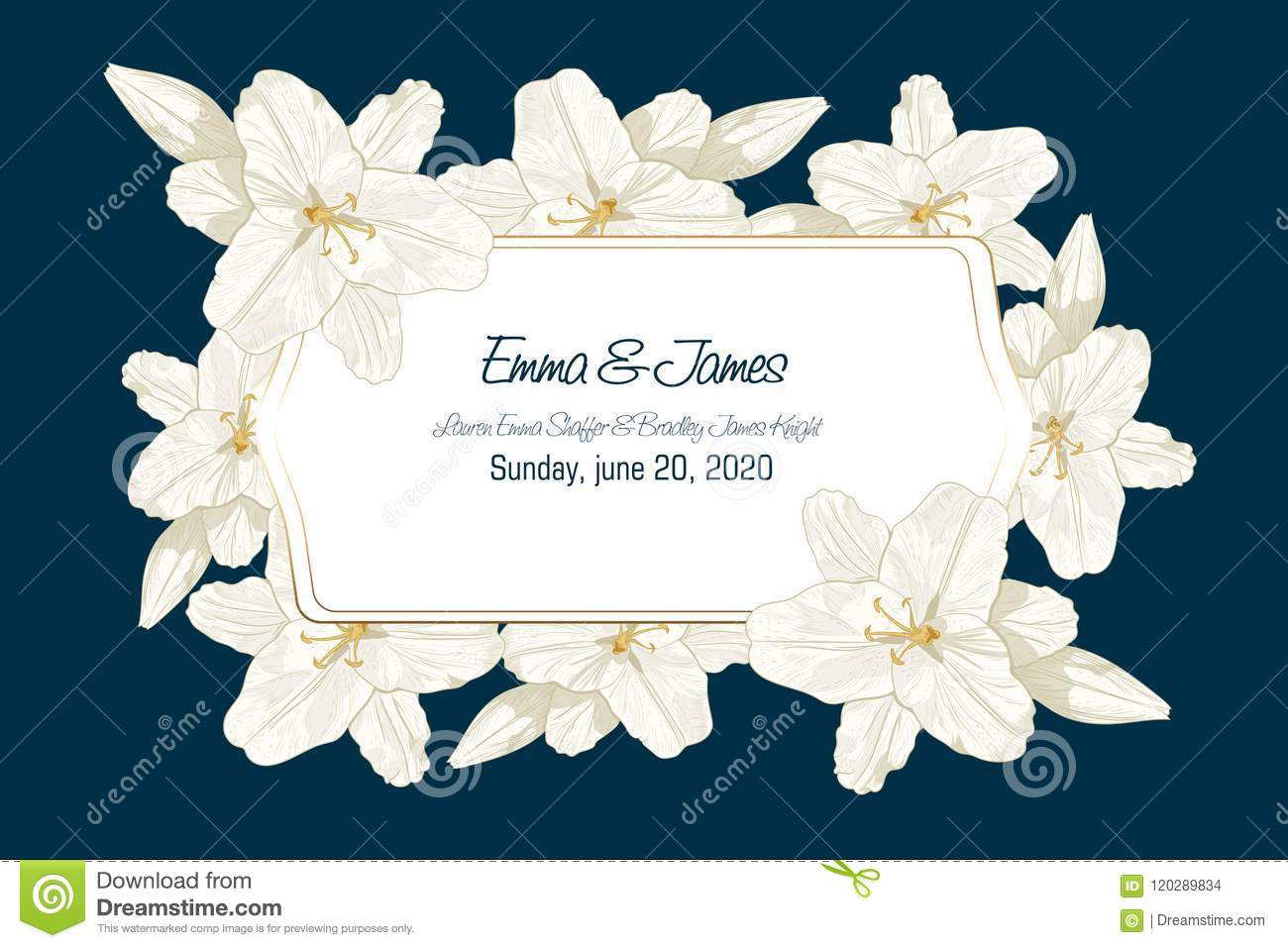 Royal Line Lilies Can Be Used As Greeting Card Invitation
