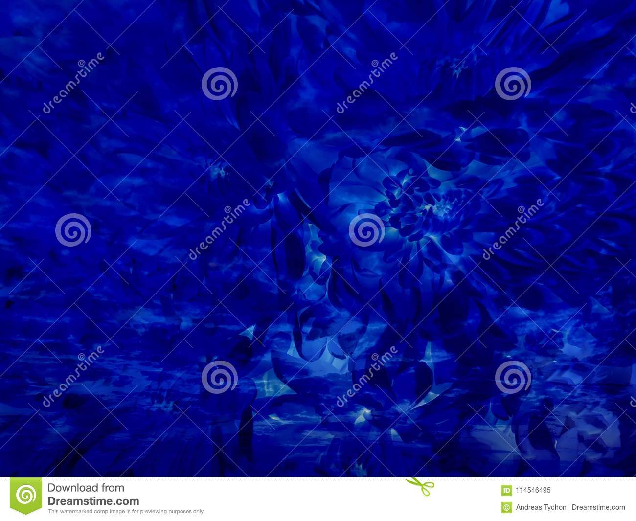 Royal Midnight Blue Abstract Flower Background