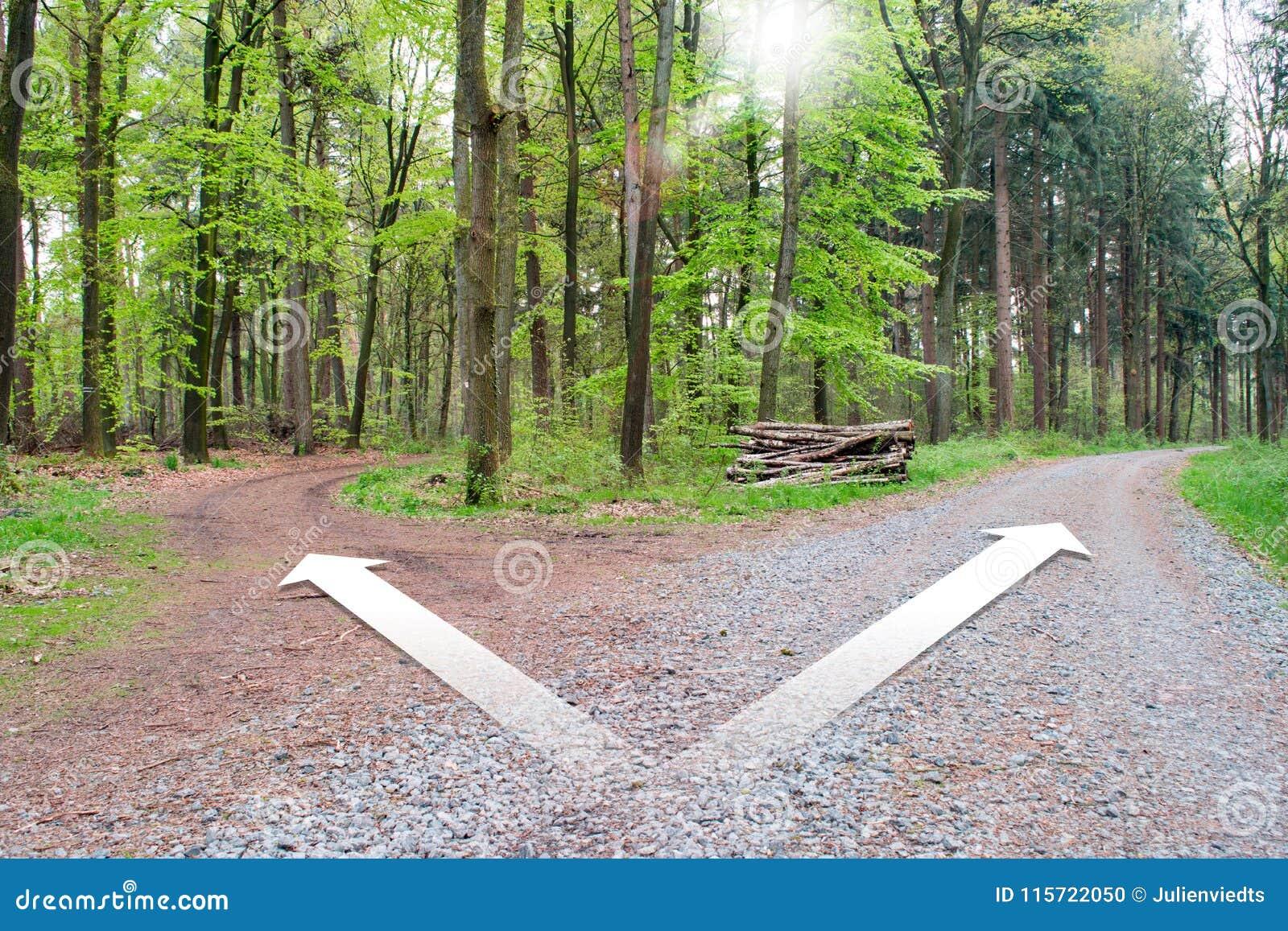 Rozdroża dwa różnego kierunku - Wybiera poprawnego sposób