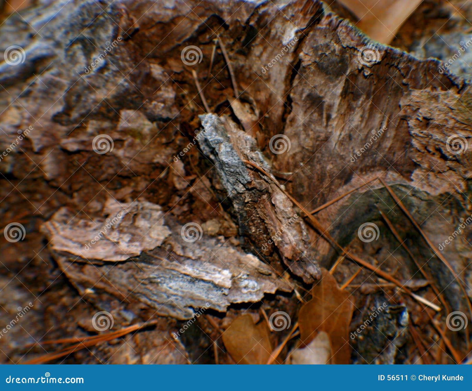 Rozdrobnione drewna