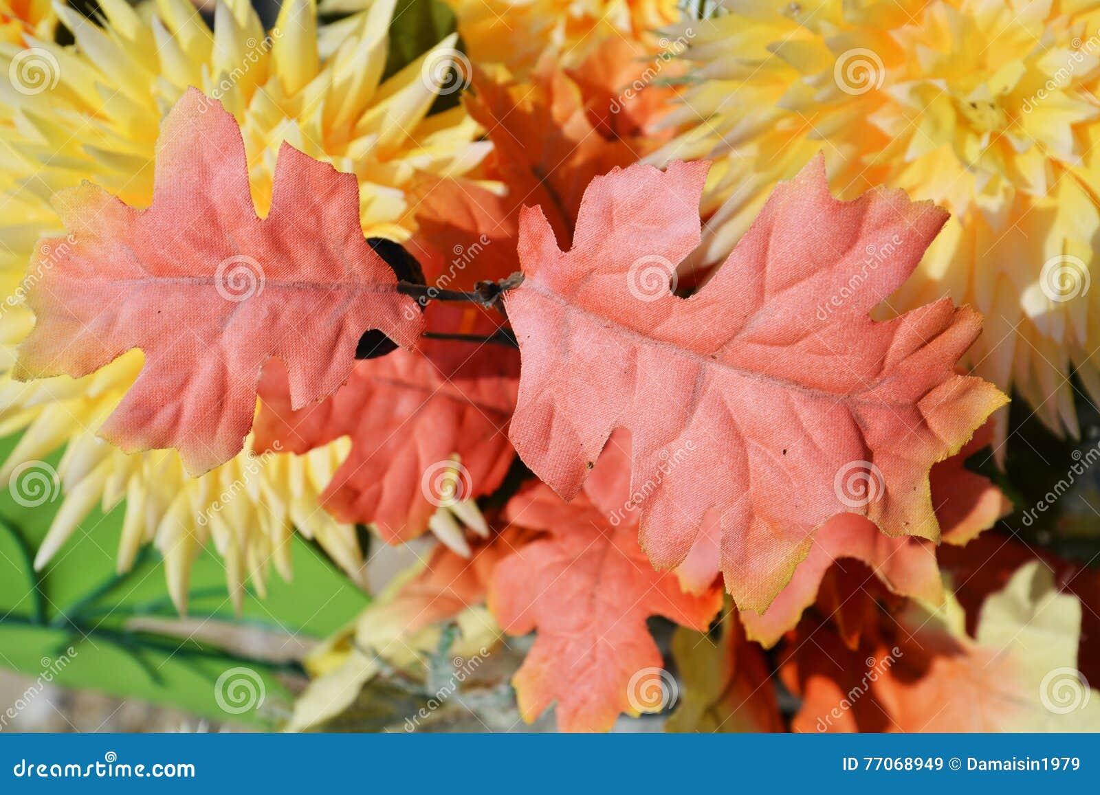 Roze bladerenachtergrond