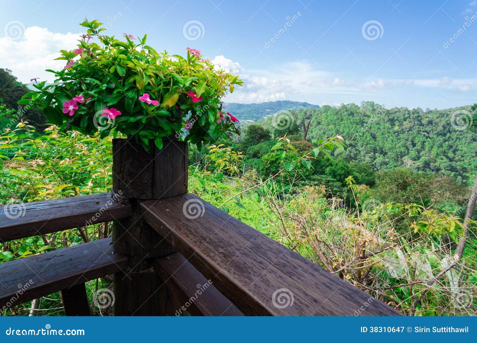 Roze bloemen bij houten terras met bosberg en blauwe hemel stock afbeelding afbeelding 38310647 - Terras hout ...