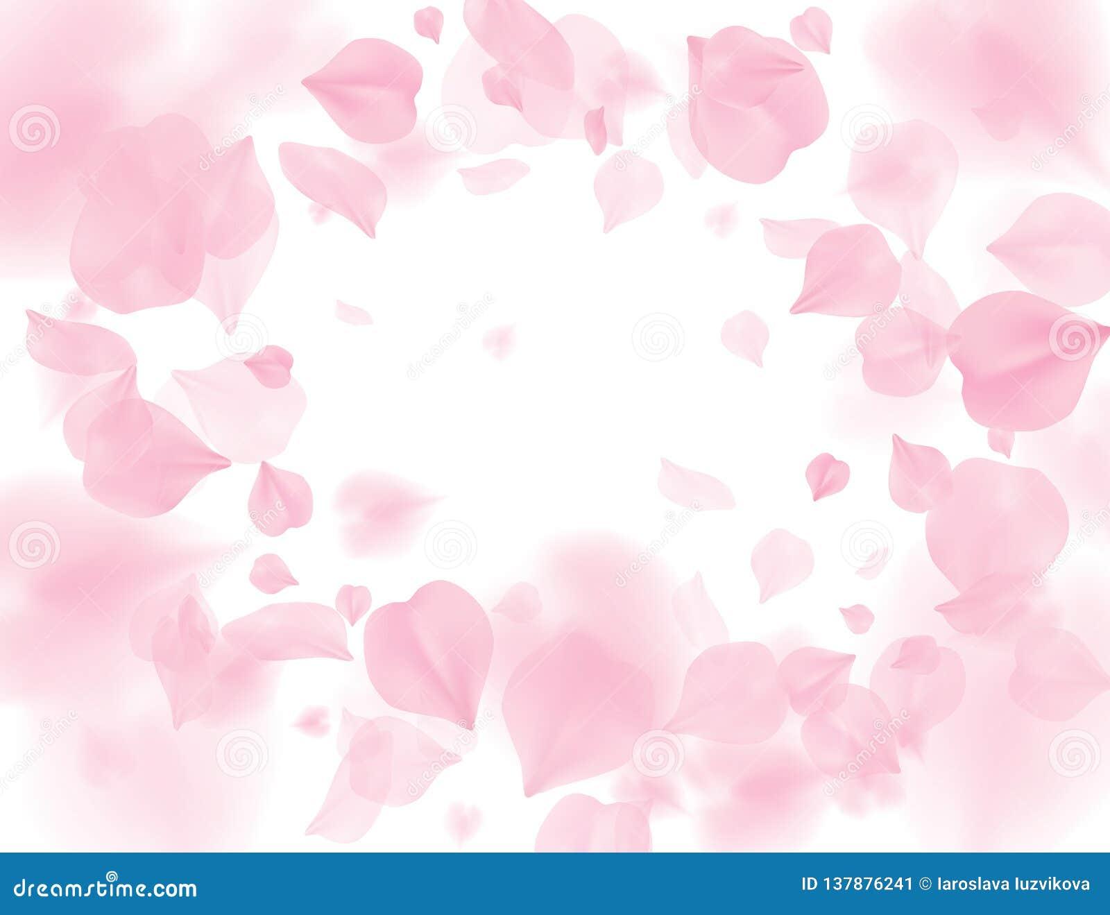Roze dalende de bloem vectorachtergrond van sakurabloemblaadjes Romantische die bloesem op witte achtergrond wordt geïsoleerd 3D