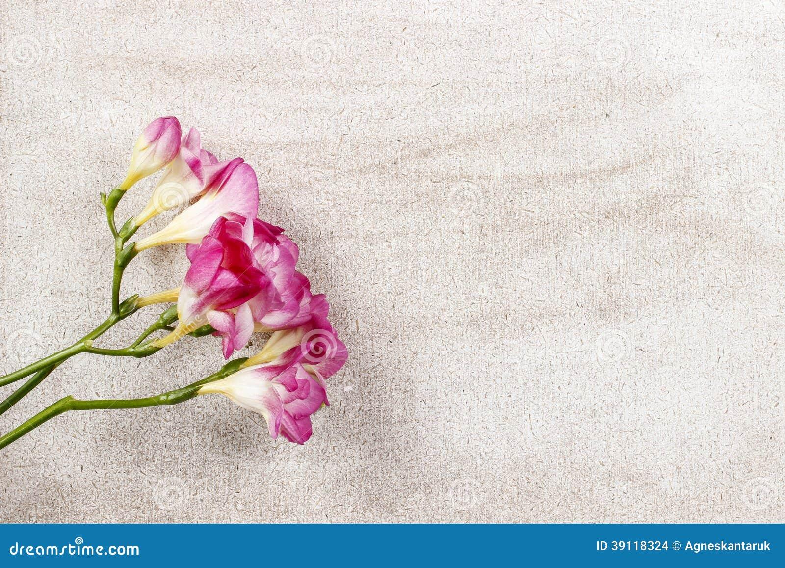 Roze fresiabloemen op houten achtergrond