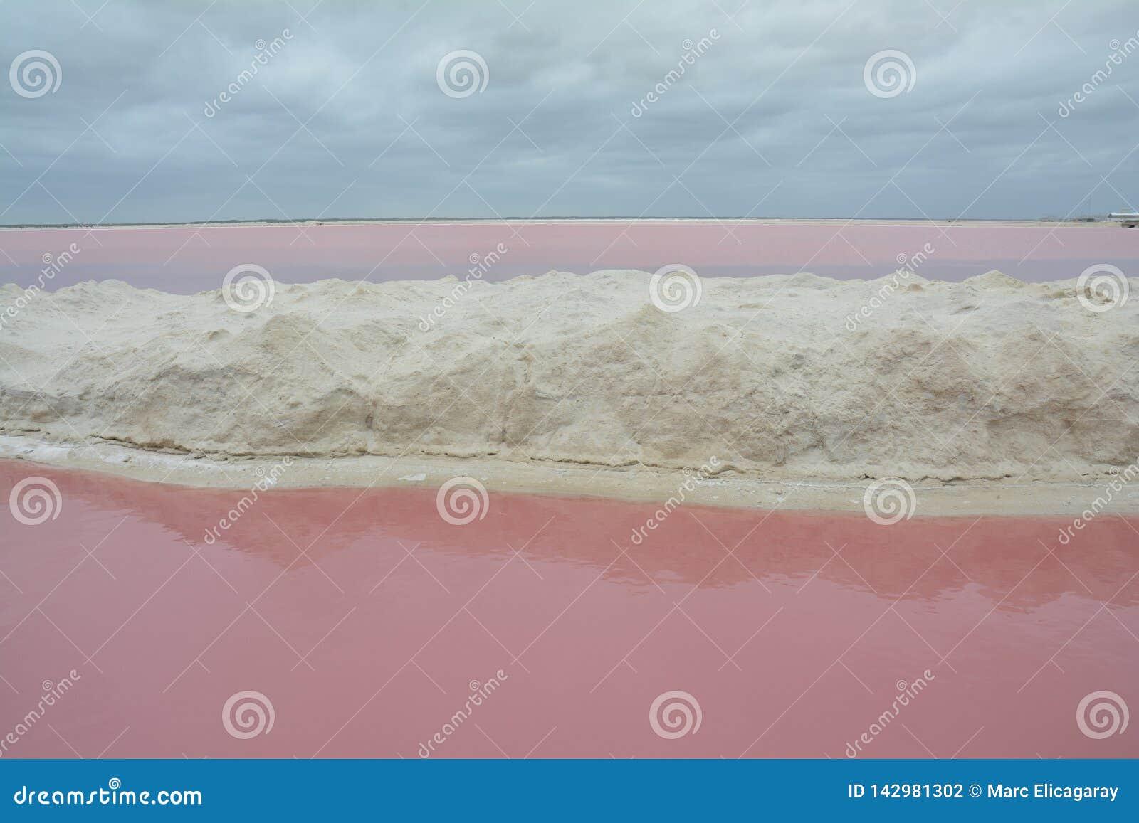 Roze Meer Las Coloradas Yucatan Mexico