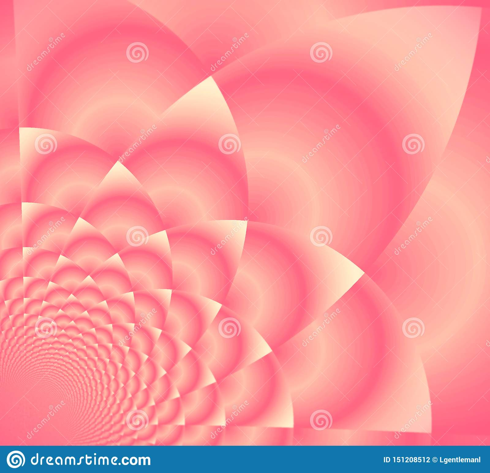 Roze Opperst Lotus