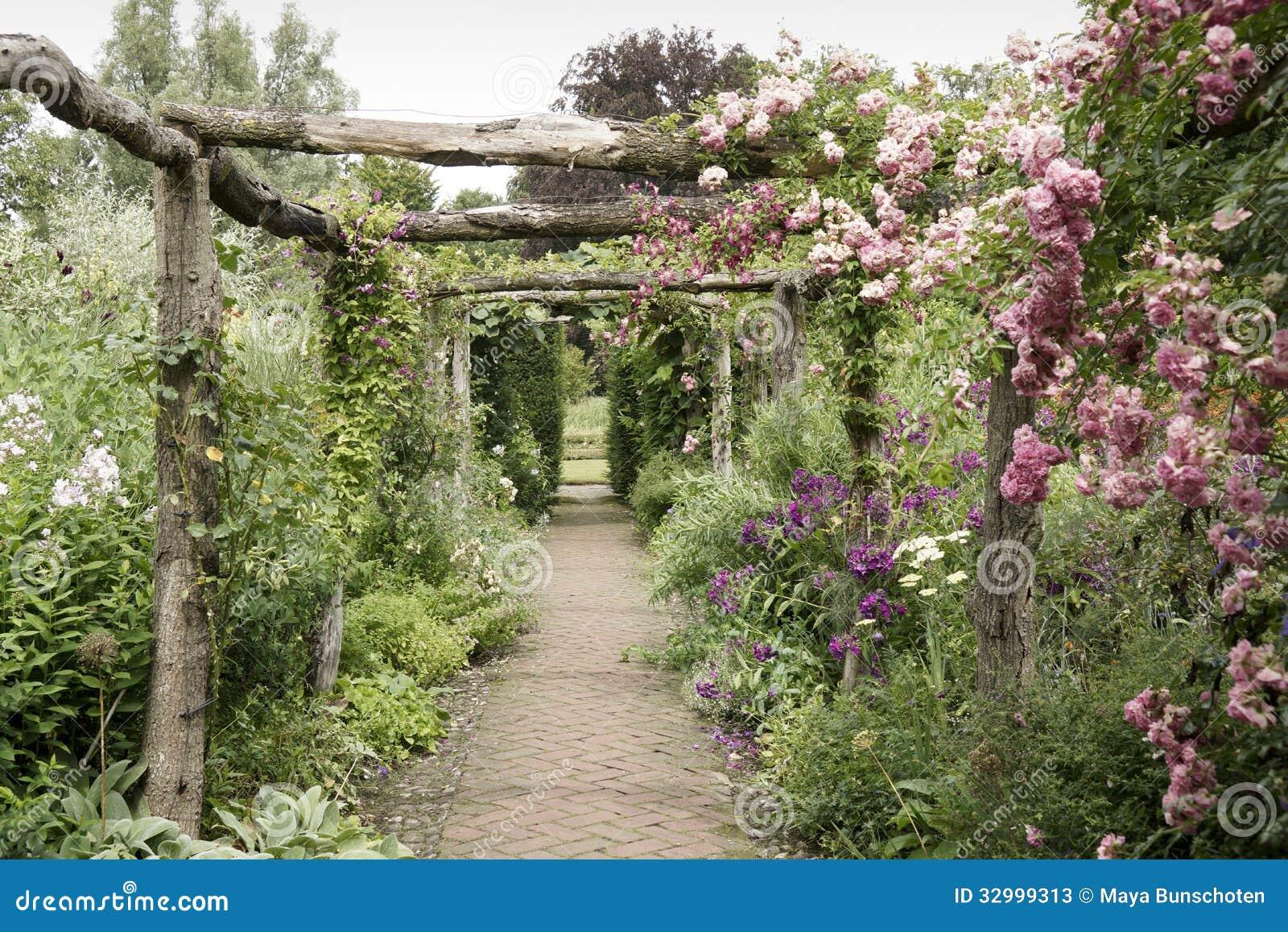 Roze rozen op een pergola stock foto 39 s afbeelding 32999313 - Bedekking voor pergola ...