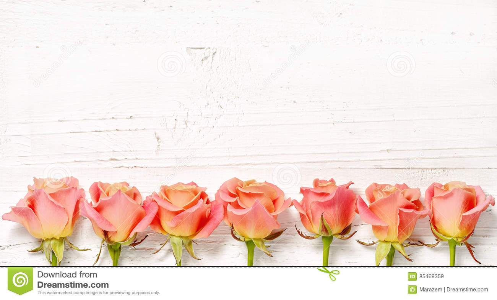 Roze rozen op witte houten achtergrond
