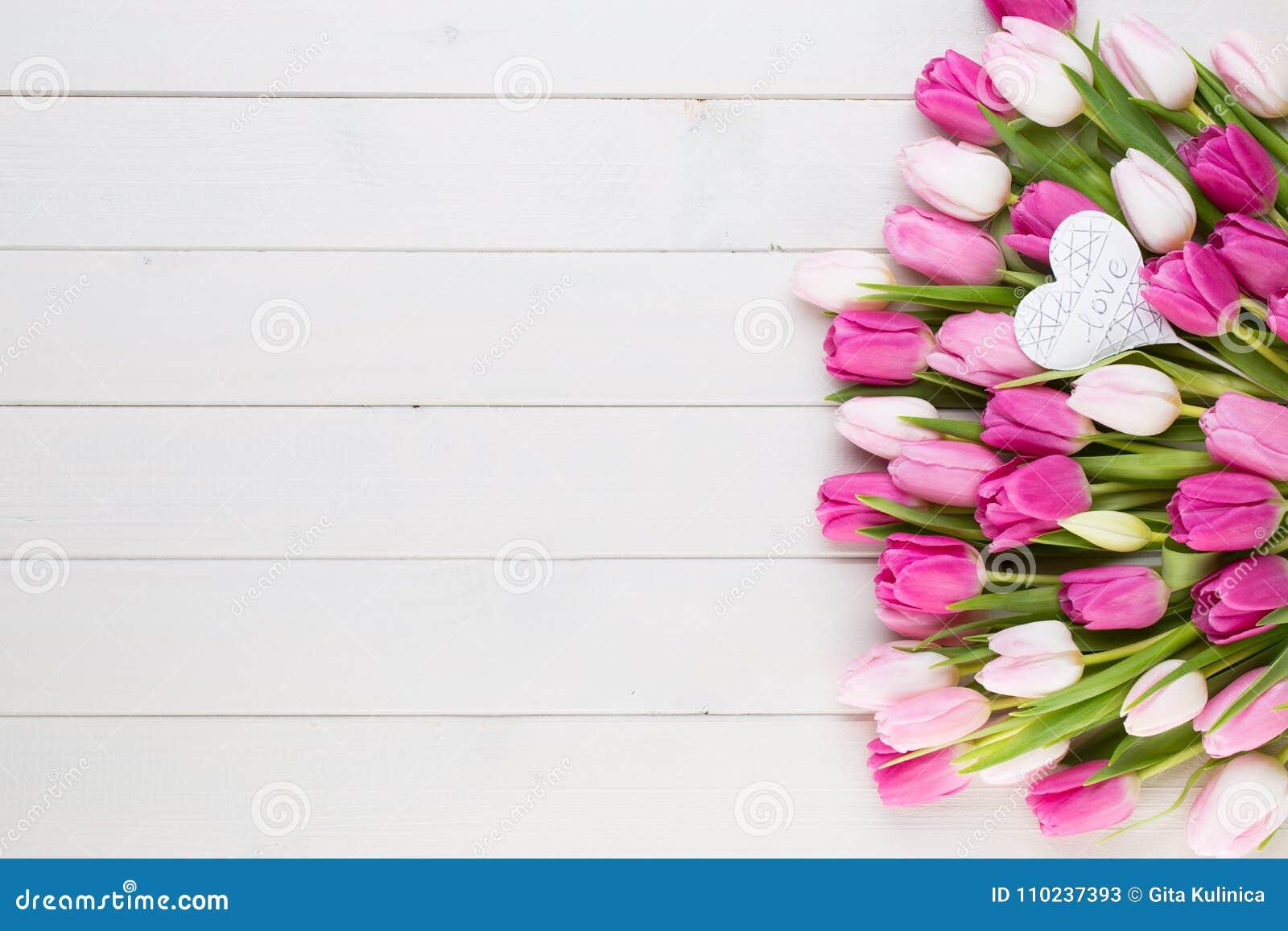 Roze tulp op de witte achtergrond De achtergrond van Pasen