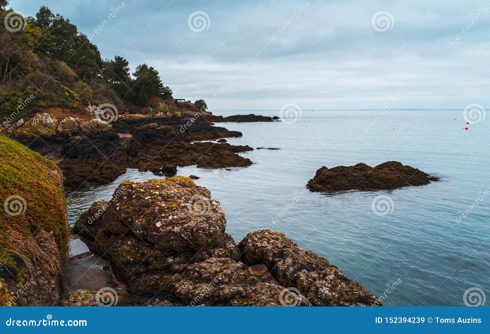 Rozel, bydło, channel islands