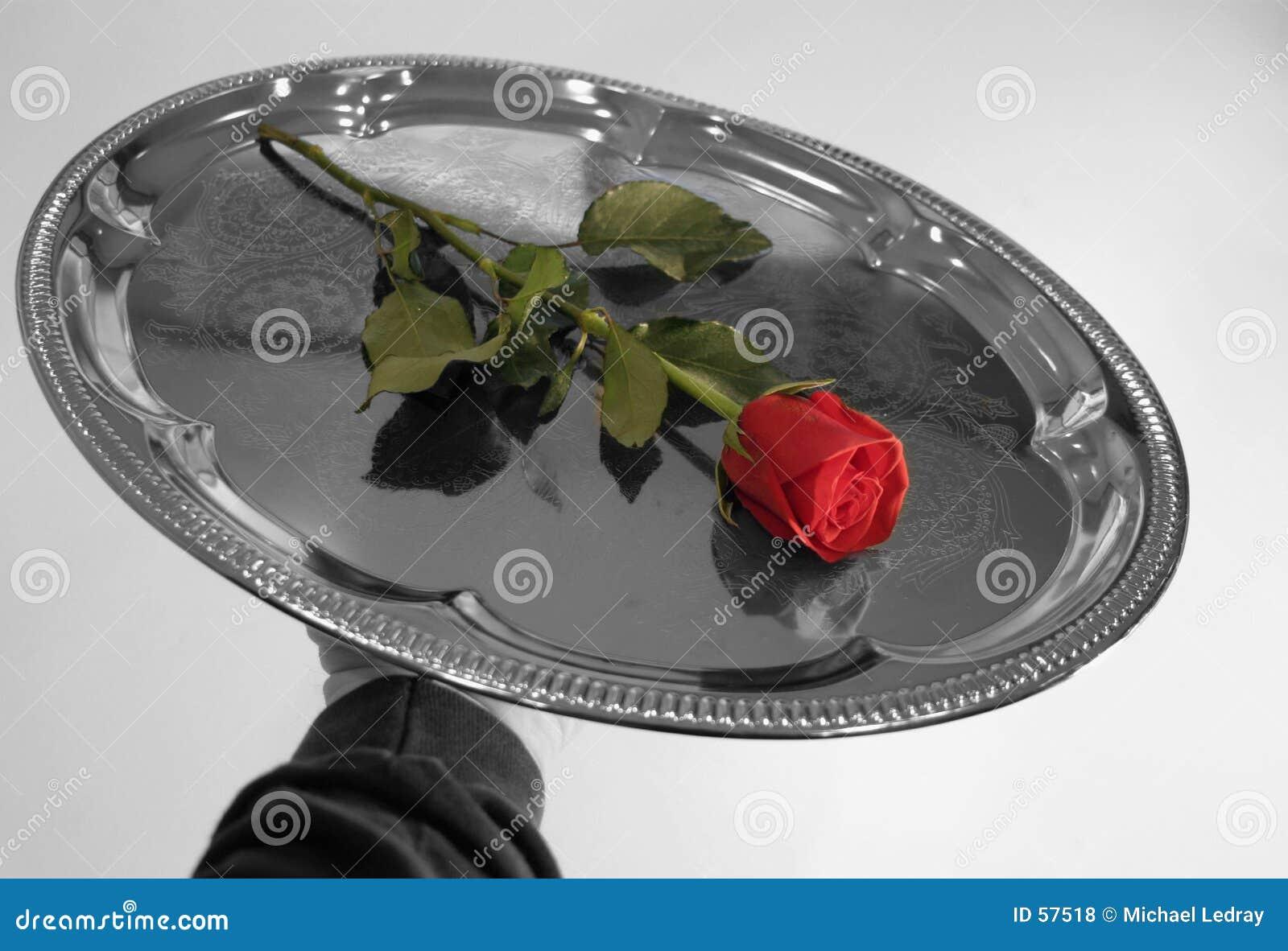 Rozen 10 van de valentijnskaart
