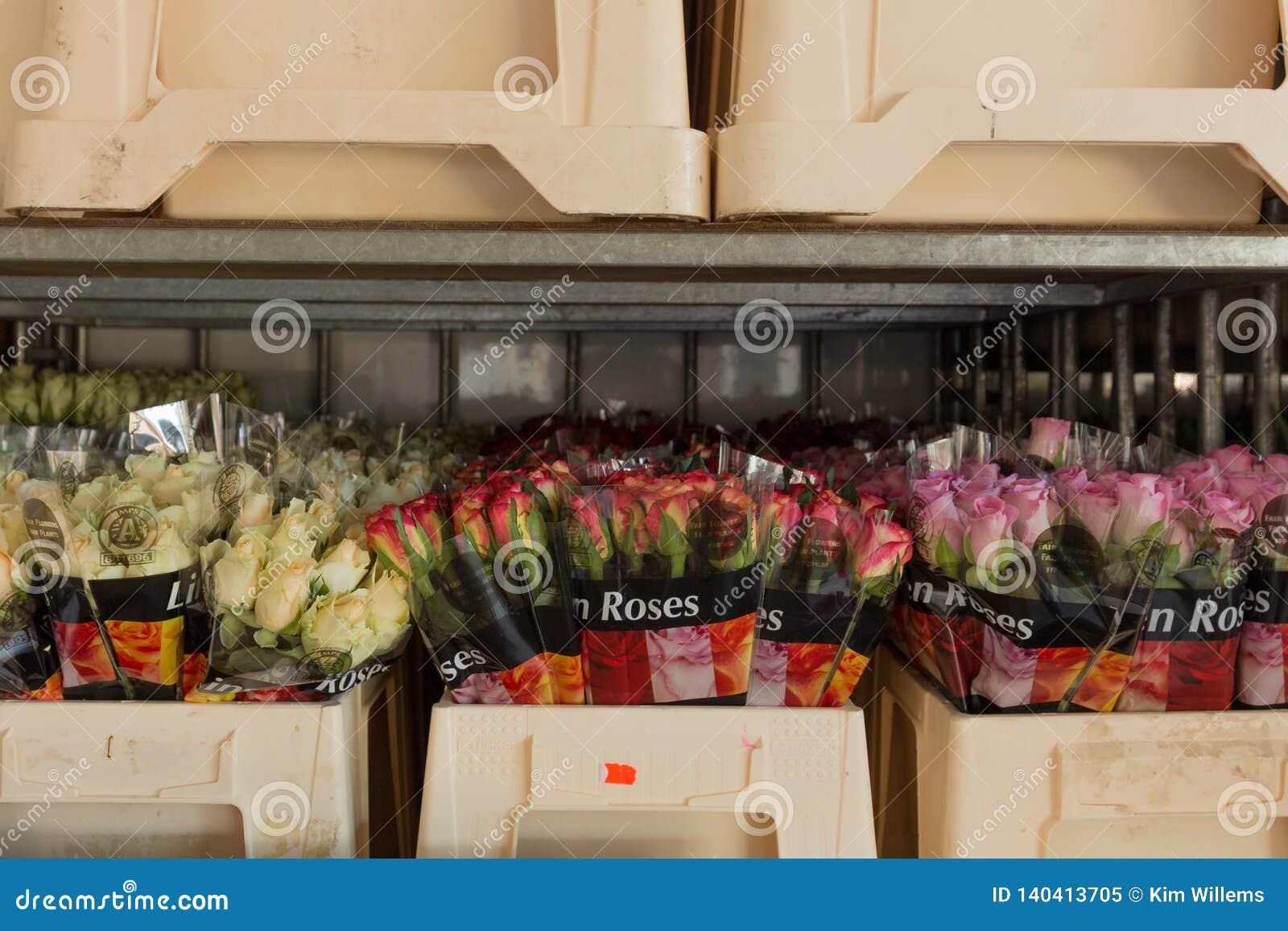 Rozen klaar om voor Valentijnskaartendag worden verkocht