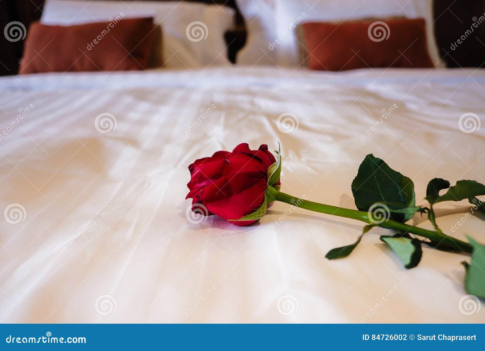 Bed Met Rozen.Rozen Op Bed Stock Foto Afbeelding Bestaande Uit Binnenlands 84726002
